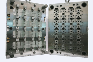 Multi cavity mold